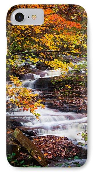 Autumn Cascade  IPhone Case