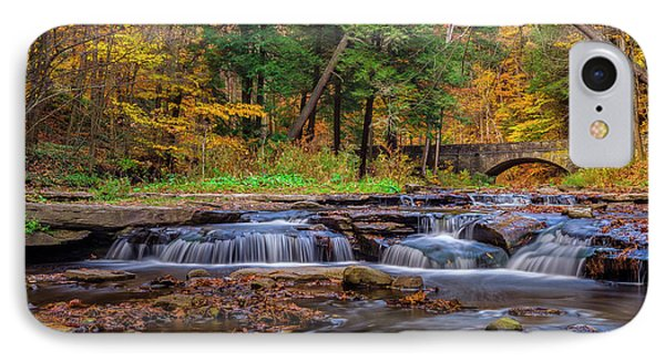 Autumn Cascades IPhone Case