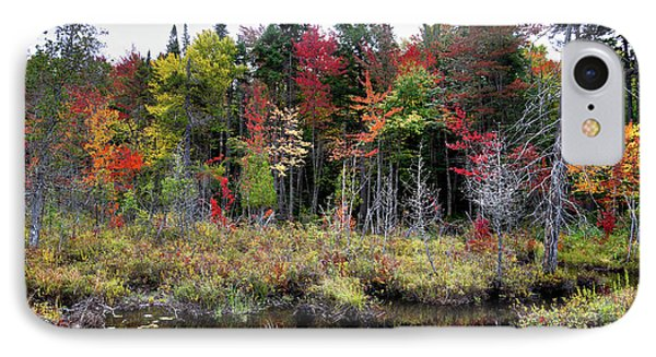 IPhone Case featuring the photograph Autumn Color In The Adirondacks by David Patterson