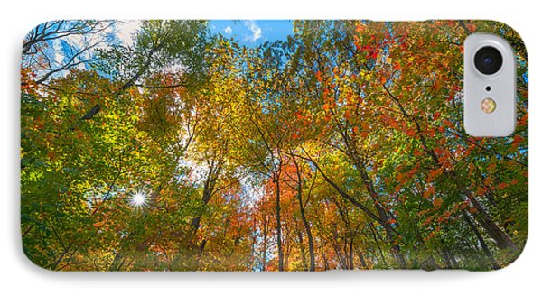Autumn Colors  IPhone Case by Michael Ver Sprill
