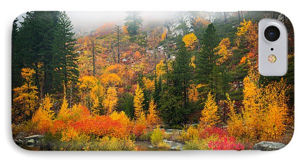 IPhone Case featuring the photograph Autumn Colors Symphony by Dan Mihai