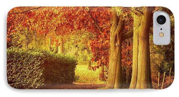 Autumn Colors Phone Case by Wim Lanclus