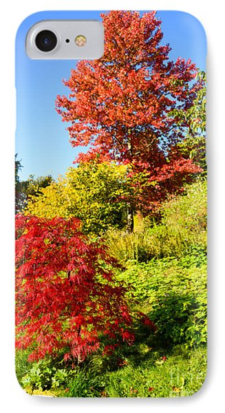 Autumn Colours IPhone Case