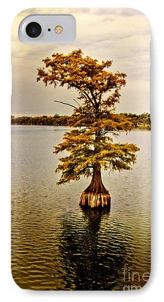 Autumn Cypress Phone Case by Scott Pellegrin