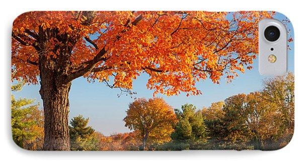 Autumn Dawn Phone Case by Brian Jannsen