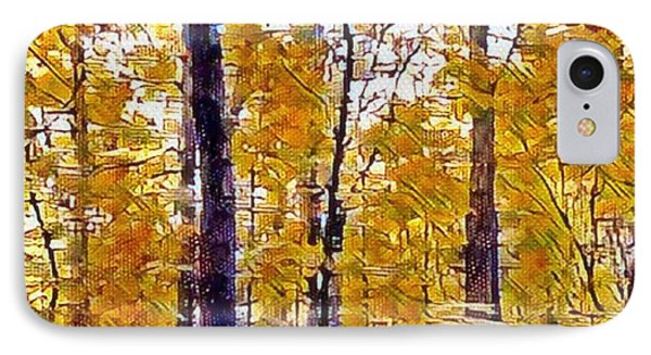 Autumn  Day In The Woods IPhone Case by MaryLee Parker