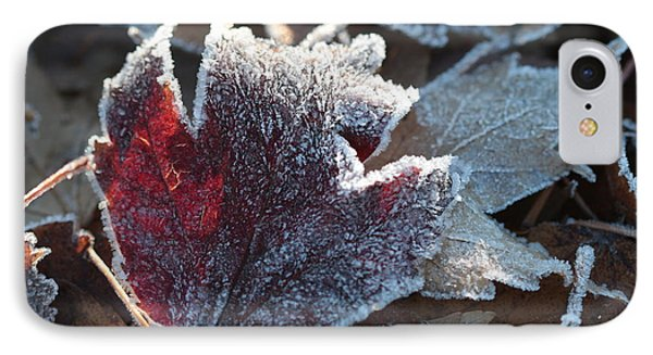 Autumn Ends, Winter Begins 2 IPhone 7 Case