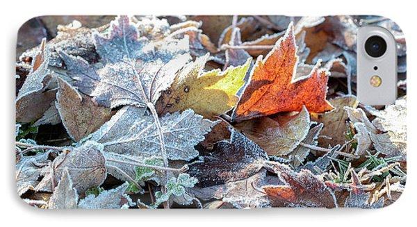 Autumn Ends, Winter Begins 3 IPhone 7 Case