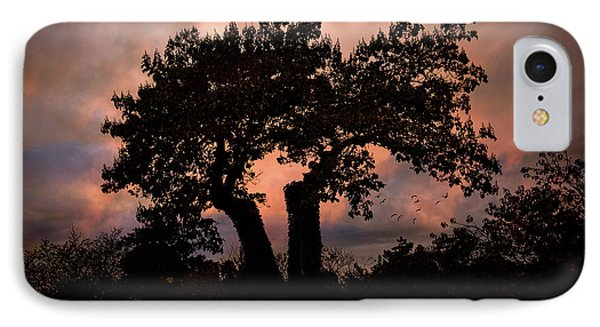 IPhone Case featuring the photograph Autumn Evening Sunset Silhouette by Chris Lord