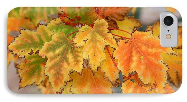Autumn Fire IPhone Case by John Loreaux