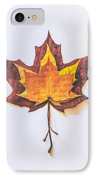 Autumn Fire IPhone Case