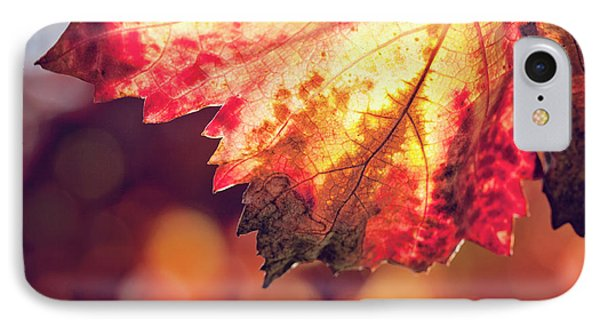 IPhone Case featuring the photograph Autumn Fire by Melanie Alexandra Price