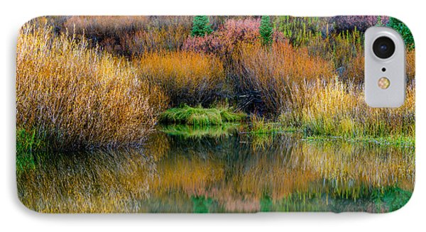 Autumn Fishing Hole IPhone Case by TL  Mair