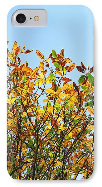 IPhone Case featuring the photograph Autumn Flames - Original by Rebecca Harman