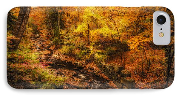 IPhone Case featuring the photograph Autumn Flow by Robert Clifford