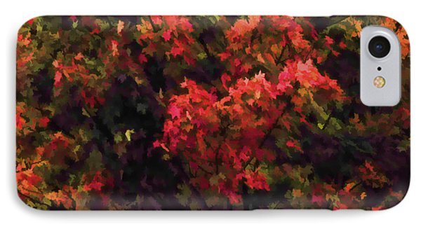 Autumn Foliage 4 IPhone Case by Lanjee Chee