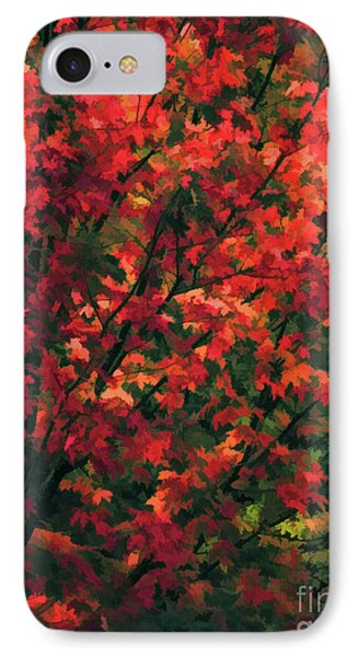 Autumn Foliage 6 IPhone Case by Lanjee Chee