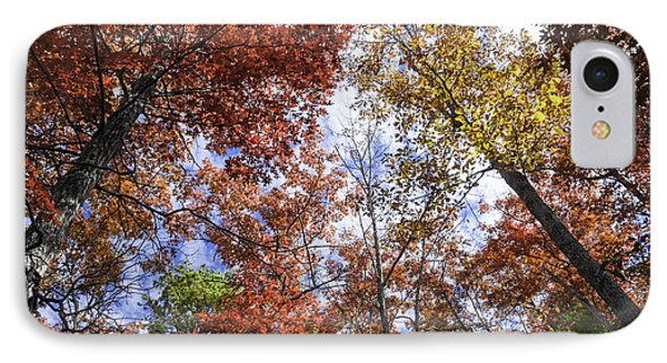 Autumn Forest Canopy Phone Case by Lynn Bauer