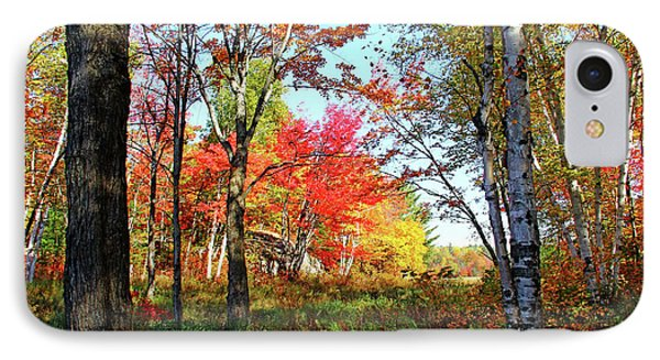 IPhone Case featuring the photograph Autumn Forest by Debbie Oppermann