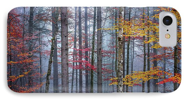 IPhone Case featuring the photograph Autumn Forest In Fog by Elena Elisseeva