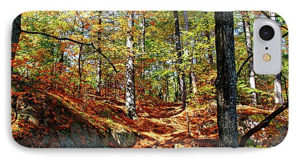 Autumn Forest Killarney IPhone Case