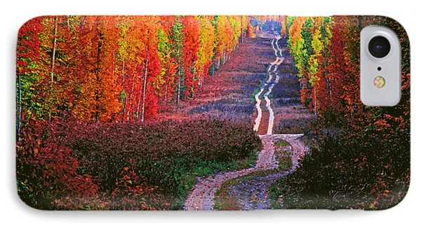 Autumn Forest Track Phone Case by Dennis Cox WorldViews