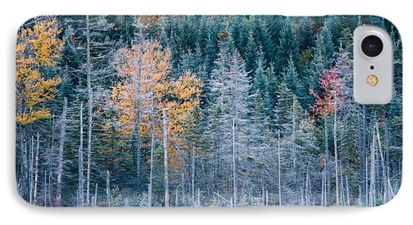 Autumn Frost IPhone Case by Jeff Sinon