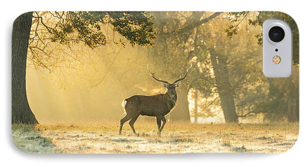 IPhone Case featuring the photograph Autumn Frost by Scott Carruthers