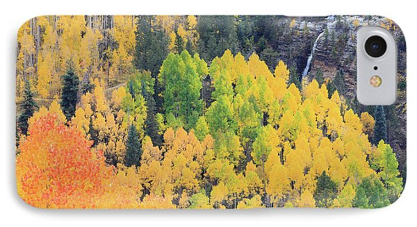 Autumn Glory IPhone 7 Case by David Chandler