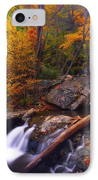 IPhone Case featuring the photograph Autumn Gold by Everett Houser