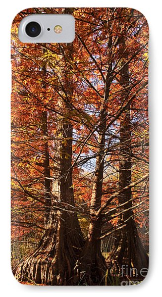 IPhone Case featuring the photograph Autumn Grandeur At Lake Murray by Tamyra Ayles