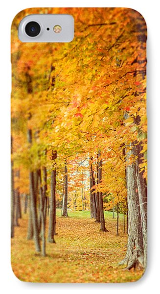 Autumn Grove  Phone Case by Lisa Russo