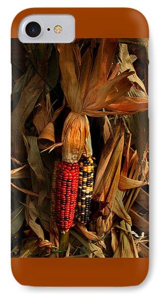 Autumn Harvest IPhone Case by Kathleen Stephens