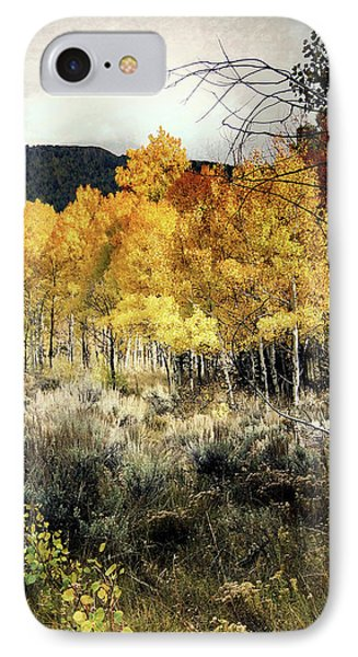 Autumn Hike IPhone Case by Jim Hill