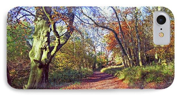 Autumn In Ashridge IPhone Case