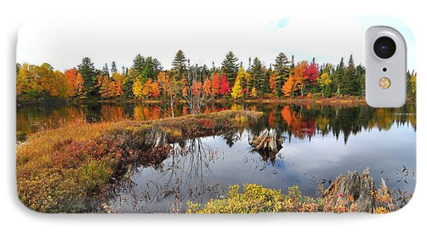 Autumn In Coos County IPhone Case by Catherine Reusch Daley