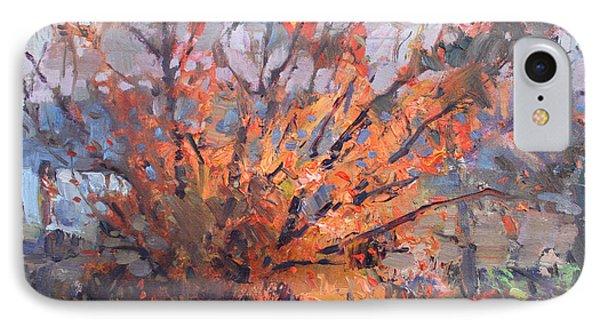 Autumn In Late Evening IPhone Case