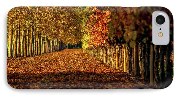 IPhone Case featuring the pyrography Autumn In Napa Valley by Bill Gallagher