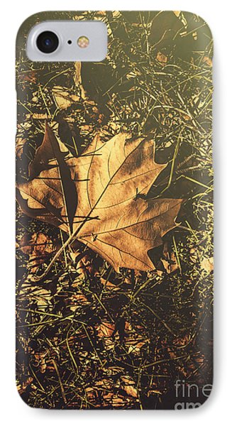 Autumn In Narrandera IPhone Case by Jorgo Photography - Wall Art Gallery