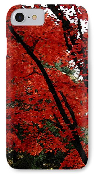 Autumn In New England Phone Case by Melissa A Benson