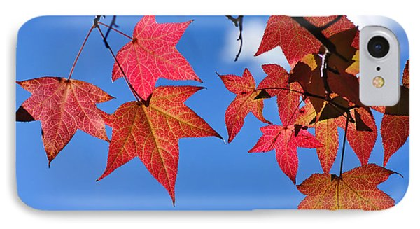 Autumn In The Sky Phone Case by Kaye Menner