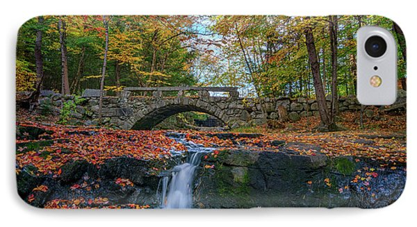 Autumn In Vaughan Woods IPhone Case by Rick Berk