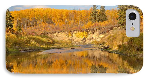 Autumn In Whitemud Ravine IPhone Case by Jim Sauchyn