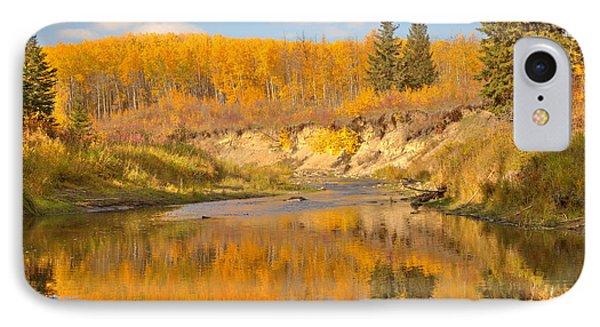 Autumn In Whitemud Ravine IPhone Case