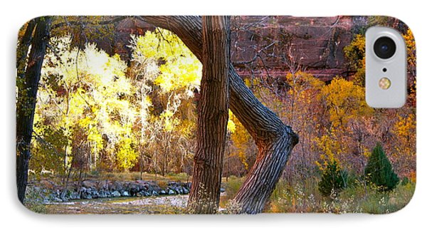 Autumn In Zion IPhone Case