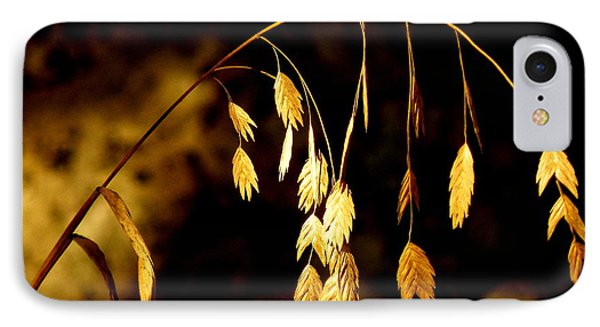 Autumn Jewelery IPhone Case