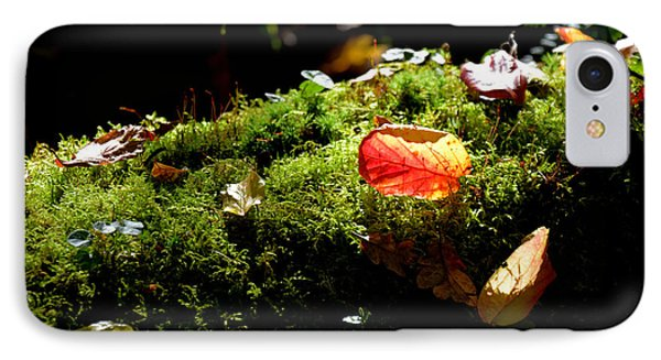 Autumn Jewels For A Mossy Log IPhone Case by Tanya Searcy