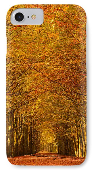 Autumn Lane In An Orange Forest IPhone Case by IPics Photography