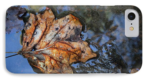 IPhone Case featuring the photograph Autumn Leaf by Debra and Dave Vanderlaan