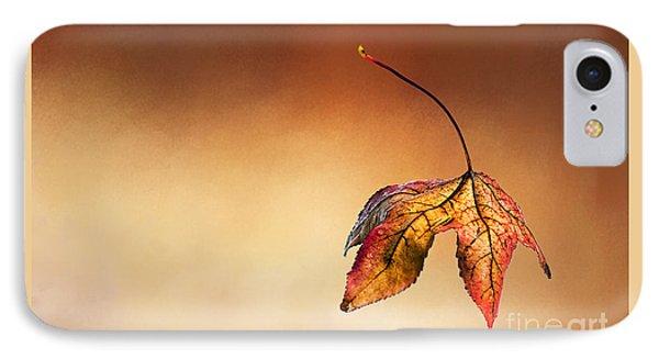 Autumn Leaf Fallen IPhone Case